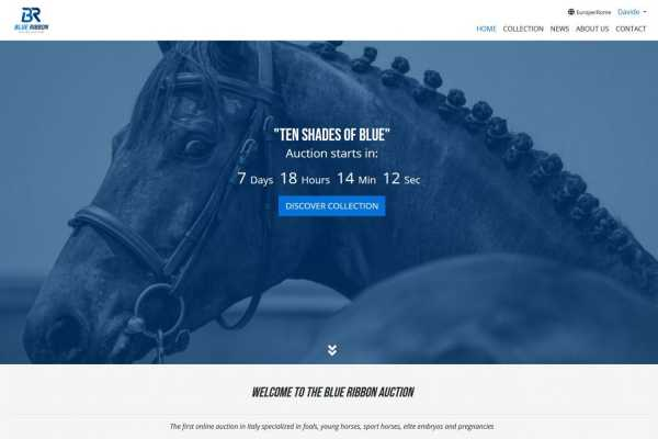 Blue Ribbon Auction website is online !!